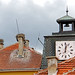 Bulgaria-03000 - Storks Everywhere