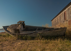 The Old Boat of Semiahmoo (NW Vagabond) Tags: old building abandoned boat wooden washington state cannery semiahmoo
