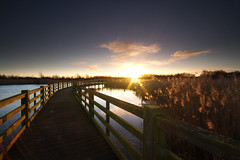 Waters Edge, Barton upon Humber (sammydingle) Tags: sky sun water clouds sunrise canon fence reeds sigma filter walkway lee 7d barton grad 1020 upon humber
