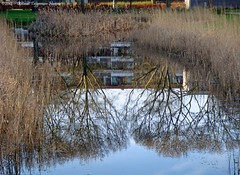 reflecties / reflections (dietmut) Tags: reflections nederland sonycybershot zuidholland 2014 hoogvliet reflecties zalmplaat sonydsct200 dietmut januarijanuary yourfavorites85