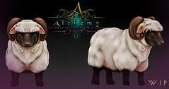 Alchemy sheep WIP (Dani @ Birdy/Foxes/Alchemy) Tags: pet sheep mesh low sl fantasy secondlife helix nina poly companion rp tyr alchemy roleplay rozenblum ~alchemy~ vision:outdoor=0675