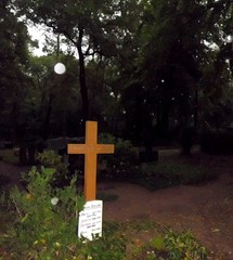 CIMG0310 (In Search Of The Unexplained) Tags: park light shadow cemetery graveyard fog angel real death licht scary memorial energy nebel spirit ghost orb voice haunted spirits kommunikation tape angels haunting ghosts adventures activity tbs inspirational electronic orbs paranormal healing ghostly schatten esp beings psyche hunters phenomena itc evp parallelwelt caughtontape jenseits tonbandstimmen paralleluniversum transkommunikation instrumentelle jenseitsstimmen