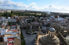 Seville from the top of the Giralda (8) (Prof. Mortel) Tags: spain minaret seville andalucia giralda almohad