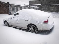 Blanket (Jersey JJ) Tags: snow blanket impala blizzard g11 2014