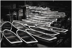 (Masahiko Kuroki (a.k.a miyabean)) Tags: bw boat 井の頭池 fujixe1 fujifilmsuperebcxf2841855mm inogashirapond