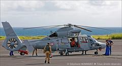 Panther Marine Nationale (stef974run) Tags: panther famas cocarde tir transall c160 brevet bommert armedelair treillis etom commandodelair dtachementarien181 fmair