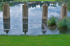 Pooling (MPnormaleye) Tags: urban reflection green wet water pool grass rain weather 35mm flood landscaping utata bizarre rainfall utata:project=halfburied