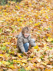 Happy child with glasses playing with dead leaves (Carlos Ciudad - Stock Photography) Tags: park blue parque autumn portrait game fall colors leaves childhood hair hojas 50mm glasses kid spain eyes europa europe child play 5 retrato coat happiness ground olympus leon ojos blonde otoño gafas years hopefully felicidad ilusion juego infancia niño zuiko pelo gettyimages suelo años inocencia rubio azules abrigo platanero castillayleon españ coger e520 colroes lacandamia platanus×hispanica castilleandleon gettyimagesspain cctrillastock