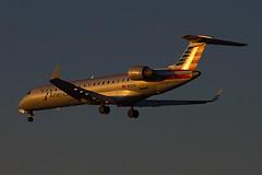 N512AE landing at SJC (ChasenSFO) Tags: sunset sanjose sjc americaneagle ae envoy crj700 sanjoseairport eagleflight sanjosecalifornia cr7 ksjc egf sanjosenormanyminetaairport