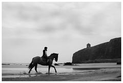 Ireland #016 (Tiago Silvestre - Photography) Tags: ocean ireland sea blackandwhite bw horse irish black blancoynegro beach monochrome branco temple preto bn londonderry northernireland pretoebranco biancoenero irishpeople mussenden mussendentemple scarp