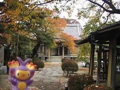 Ambipom in Kasukabe, Saitama 13 (Kasadera) Tags: toys figure pokemon pokmon  kasukabe   pokemonkids  ambipom     ambidiffel capidextre
