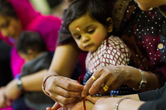 Shree Swaminarayan Mandir - Dharma Bhakti Manor -  Shivratri 2017068 (Dharma Bhakti Manor) Tags: shivratri maha sivaratri shivaratri sivarathri hindu festival lord shiva shiv pooja poojan linga shivling lingam mahadev bilva bael year utsav rudra abhishek