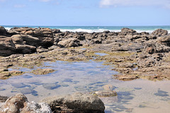 DSC_6951 (Tim Beach) Tags: great ocean road melbourne victoria australia port fairy twelve 12 apostles princetown apollo bay beach sea water