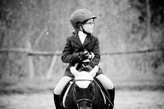 Horse Show (JustJamieLeigh) Tags: horse horses horseback horsebackriding horseshow show equines english englishriding equestrian equine ponies pony riding blackandwhite monochrome competition canon 60d canon60d