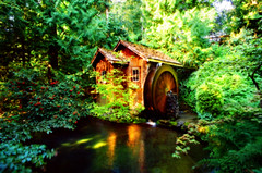 Forest Hideaway (David Basiove) Tags: tamronadaptall2448mmf35 canonf1 canon water waterwheel cabin forest canada british columbia