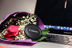 Ever Day Canon (Nourah.A.Edhbayah (Super Flower♥إظبيه)) Tags: canon60d canon ever day nourah abdullah edhbayah kuwait q8 نورة عبدالله اظبية كانون الكويت