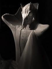 Unveil (Sea Moon) Tags: log carving wood cracked smooth latex skull sheet veil translucent stilllife animal