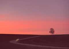 Afterglow (Claude@Munich) Tags: germany bavaria upperbavaria egling dietramszell harmating tree lonelytree single road curve sunset afterglow sunsetglow evening sky claudemunich bayern oberbayern baum strase kurve sonnenuntergang abendrot abendstimmung abends explore explore161170327