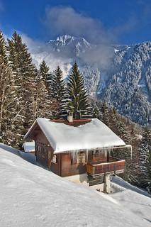 Swiss winter paradise, Paradis hivérnale suisse , Caux et  Les Rochers de Nays  . Canton of Vaud. No. 5976.