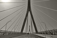 La tela de araña (Puente de la Constitución) (Retratista de paisajes y paisanajes) Tags: bridge líneas infraestructura estructura edificio puente arquitectura cadiz puertoreal andalucia españa matagorda
