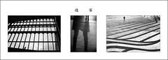 1-F組合-過客-_47A9753-BW-5DIII-Tamron 28-300_DSC4969-Nikon D800E-Nikkor 28-300mm-_47A0410-BW-1-Canon 5DIII-Tamron 28-300mm-May Lee 廖藹淳 (May-margy) Tags: 組合作品 過客 maymargy bw 黑白 人像 剪影 模糊 窗框 地坪 玻璃 街拍 streetviewphotographytaiwan 天馬行空鏡頭的異想世界 mylensandmyimagination 心象意象與影像 naturalcoincidencethrumylens 幾何線條 humaningeometry 新北市 台中市 台北市 台灣 中華民國 taichungcity taipeicity taiwan repofchina f組合過客47a9753bw5diiitamron 28300dsc4969nikon d800enikkor 28300mm47a0410bw1canon 5diiitamron 28300mm maylee廖藹淳 portrait silhouette window glass frame floor blur