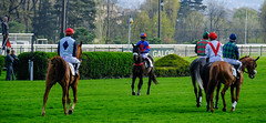 GAF photo-6.jpg (GAF photo) Tags: auteuil courseshippiques