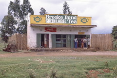 Store-Bar, Nairobi - Naivasha Road, Kenya img199 (Hart Walter) Tags: tourism coffee cattle rice tea goats sunflower sisal camels sugarcane deforestation desertification tef africanlanduse baobabdestruction