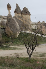 pasabag-2013.jpg (James Popple) Tags: turkey cappadocia paaba