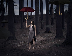 Sheltered (Jon Cospito Photography) Tags: trees floating location editorial conceptual umbrellas