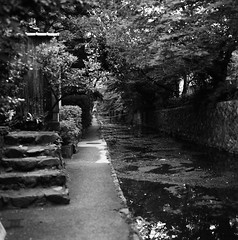 "Canal ""Takase River"" and the Alley (Purple Field) Tags: street bw slr 120 6x6 film monochrome japan zeiss walking square 50mm canal alley kyoto kodak tmax iso400 hasselblad carl   medium  cf f40 distagon 500cm"