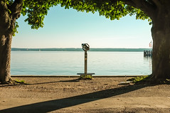 Ammersee View (Adam Haranghy) Tags: trees friends sun lake hot water beer sunglasses weather germany landscape bayern deutschland bavaria see fuji sommer lifestyle german fujifilm bier baden landschaft ammersee ausblick bavarian herrsching x100 seeblick