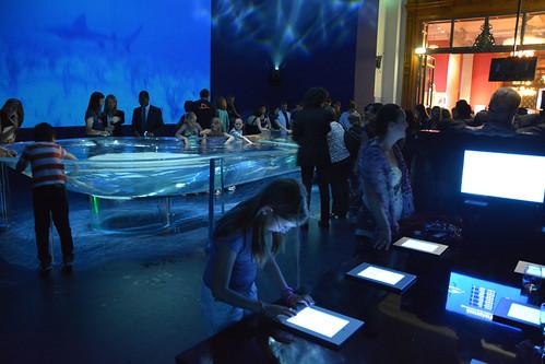 Photo diaporama - Salle de l'aquarium - Projection vidéo et jeu iPad