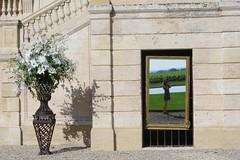Nouveau lieu de travail... (IdAzAre - away..) Tags: portrait fleurs reflex autoportrait wine bordeaux vin 1855 miroir château baron stlambert gironde médoc pauillac pichonlongueville grandcruclassé