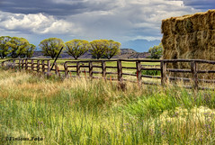Field, Mountains & Storm Clouds (Finious Foto) Tags: trees storm nature field clouds fence landscape colorado montrose hay hdr