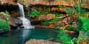 *Secret Falls* - Upper Gledhill Falls, Ku-Ring-Gai National Park, NSW, Australia (André Distel Photography) Tags: nature water landscape 50mm waterfall nationalpark nikon sydney sigma australia falls upper nsw polarizer vanguard circularpolarizer d800 waterscape kuringgai waterflow sigma50mm landscapephotography gledhill watermotion landscapephotographer induro kaesemann nikond800 luminositymasks uppergledhill andredistel uppergledhillfalls vanguardsbh250 andredistelphotography at114 induroat114