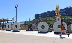 Xs and Os (Wolfram Burner) Tags: game college sports oregon campus football university stadium ducks eugene gameday burner universityoforegon uoregon autzen wolfram