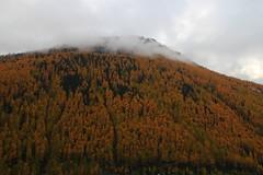 Val Senales (Eifeelgood) Tags: autumn fall indiansummer eifeelgood
