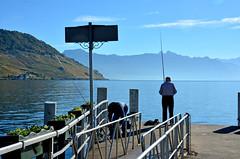 Dbarcadre de Cully (Diegojack) Tags: eau lac lman paysages cully lavaux