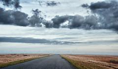 Watt Winter (Hannes Mauerer) Tags: street winter sky nature landscape nationalpark nebel landwirtschaft natur norden wolke wolken landschaft nordsee naturschutzgebiet windmhle nordfriesland windmhlen strase mauerer jmauerer