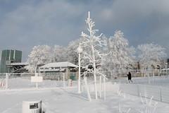 Niagara Falls Deep Freeze (William Wilson 1974) Tags: winter snow cold ice niagarafalls pretty wonderland westernnewyork wny