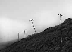 shake down (pbo31) Tags: california morning winter blackandwhite black northerncalifornia fog sunrise march nikon row powerlines bayarea marincounty leaning marinheadlands northbay 2014 goldengatenationalrecreationarea conzelmanroad d700