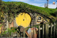 Hobbiton Lord of the Rings and Hobbit Movie Set - New Zealand (stephaniesykora) Tags: travel white hot fern film set silver bag island volcano blog mud cathedral earth cove north science move location lord adventure mount rings pools springs end gorge volcanoes geology shire taupo tongariro peninsula hobbit volcanic filming geothermal ngauruhoe ruapehu zone coromandel waiotapu active waimangu karangahake hobbiton tarawera orakei volcanics korako tvz epithermal