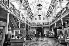 Gas Hall, Birmingham Art Gallery (Gill Stafford) Tags: city white black mono birmingham gallery image interior centre center photograph westmidlands mueum gillys gillstafford artmgashall