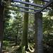 within the old zen garden of the oldest open ryokan