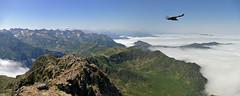 Pic du Montaigu (2339 m) - vue occidentale - Pyrénées - France (Démocrite, atomiste dérouté) Tags: mountain montagne landscape altitude paysage sommet sudouest hautespyrénées bigorre merdenuage vautourfauve picdumontaigu