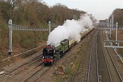 Dydd Gŵyl Dewi Hapus! (Treflyn) Tags: a1 pacific 60163 tornado london paddington cardiff uk railtours charter thesaintdavid twyford electrification great western main line steam
