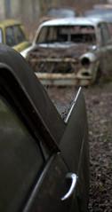 Türen (4) (Bettina.Gerstb.) Tags: scrapyard cars rust motorcycles vintagecars schrottplatz oldtimer rost motorrad autos