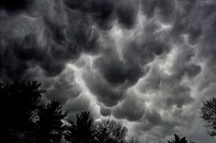 Angry Sky (Sunset Master) Tags: clouds storm stormy sky dramatic vermont landscape trees black white contrast detail nikon d7000 skyscape woods unique weather natural strange fine art dark light