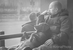 Spectators, London, UK (KronaPhoto) Tags: london street travel bnw bw streetphotography people mennesker dog hund pet kjæledyr doglovers petlovers