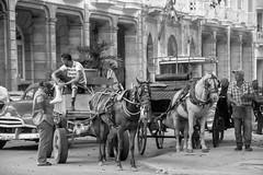 Havana 2017 (TONY VIKLICKY) Tags: nikon havana tony viklicky 2017 d40 18200 vr zoom dx convertible pink